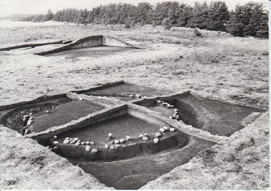 Aarupgaard 1970