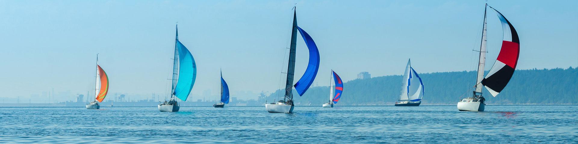 Titelbild Programmorgane - Das Meer mit 7 Segelbooten vor blauem Himmel