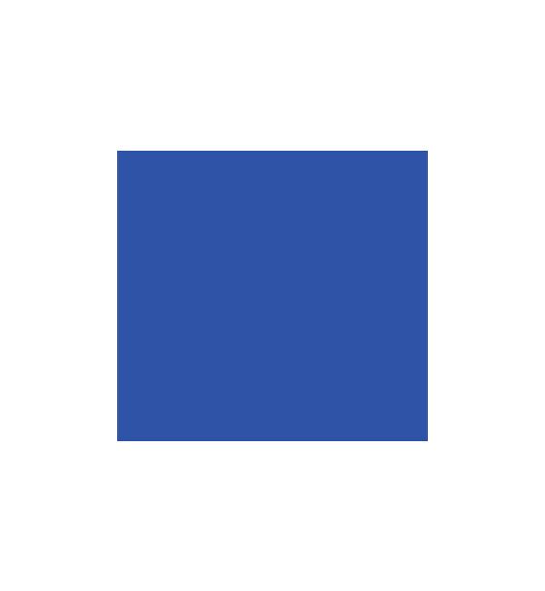 Logo Programmpartner Kreis Nordfriesland