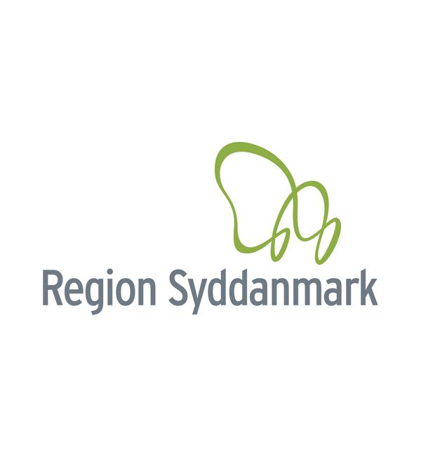 Logo Programmpartner Region Syddanmark