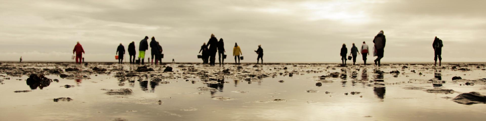 Personen im Wattenmeer